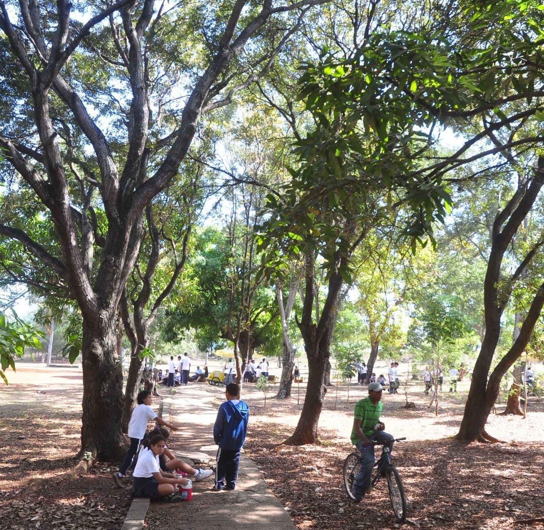 UASD rechaza propuesta de recortar parque Mirador del Sur para ampliar avenida Anacaona