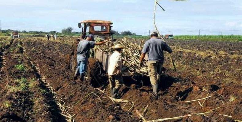 Informe: Más de 400.000 personas viven bajo esclavitud moderna en EE.UU