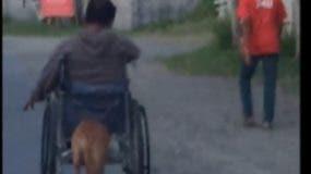 La tierna imagen hizo que muchos aplaudieran al perro.