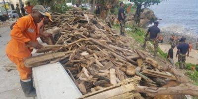 Parte de la madera arrastradas por las aguas del río Ozama tras las lluvias de la semana pasada.