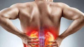 La  incidencia del cáncer del riñón es  más alta en hombres que en mujeres.