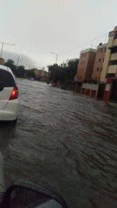Avenida Quinto Centenario. Foto: Johanna García.