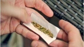 dominicanos-ny-opuestos-regularicen-uso-marihuana-para-adultos
