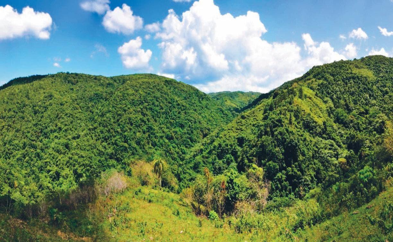 Academia de Ciencias reitera petición de que Loma Miranda sea declarada Área Protegida