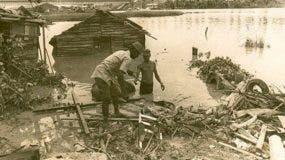 De categoría 5 y con vientos de 240 kilómetros por hora, David destruyó en más de un 70 por ciento el alumbrado eléctrico y dañó seriamente el Acueducto de Santo Domingo y el sistema telefónico.