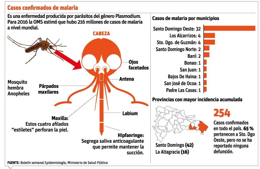 info-malaria