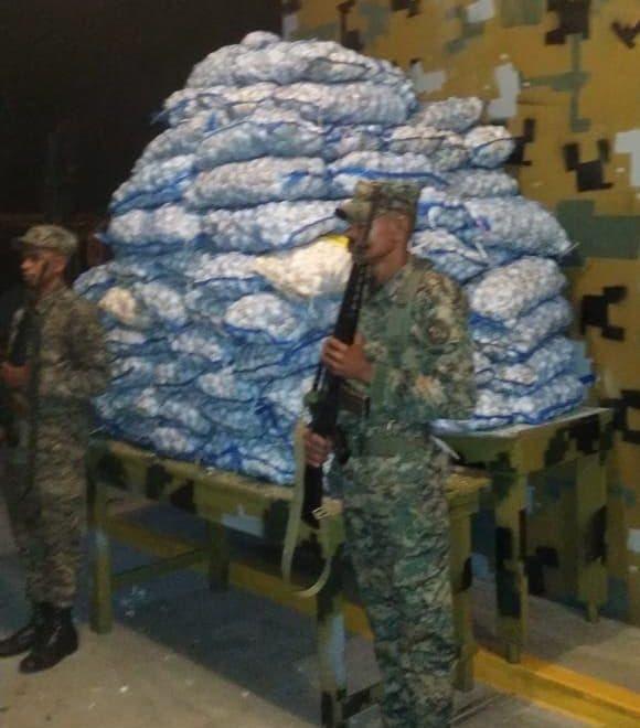 Fuerza de Tarea Conjunta e Interagencial decomisa 2,640 libras de ajo en Duvergé
