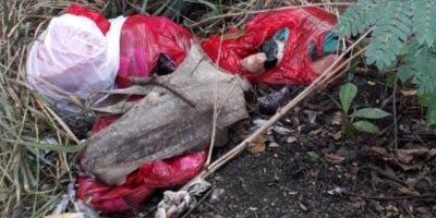 Restos humanos se encontraban en bolsas de color rojo.