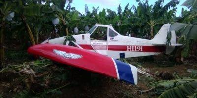 La avioneta cayó en medio de una plantación de plátanos. El piloto salió herido.