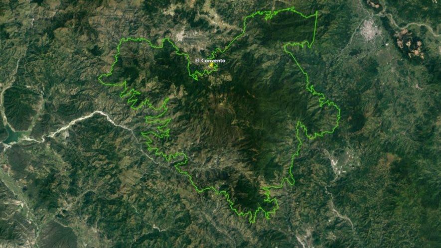Bosques se recuperan lentamente en los espacios recobrados tras la resolución 14-16 de Medio Ambiente  .  Fuente externa