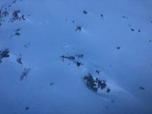 Restos del helicóptero siniestrado.