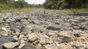 La erosión de los  suelos por  deforestación hace que desaparezca el agua y con ella la vida   .