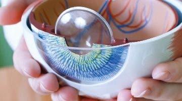 Es importante tener una revisión ocular periódica.