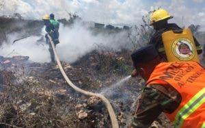 Brigadistas trabajan conjuntamente para mitigar incendios.
