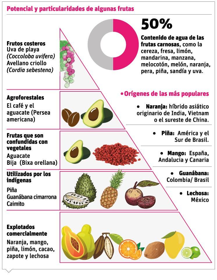 info-frutas-potencial
