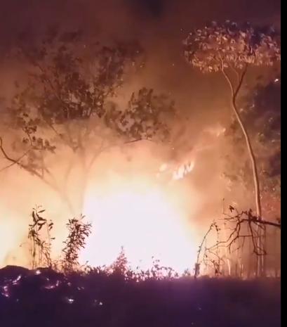 En lo que va de año se han registrado más incendios forestales en comparación al mismo periodo de 2018, y hasta el momento 40 de grandes proporciones han afectado diferentes zonas.