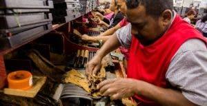La exportación del tacabo dominicano hacia China se duplicó en este año. Archivo