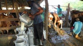 En 2011 el precio de la leche líquida  en los comercios era 45 pesos y pasó a 58 pesos.  Archivo