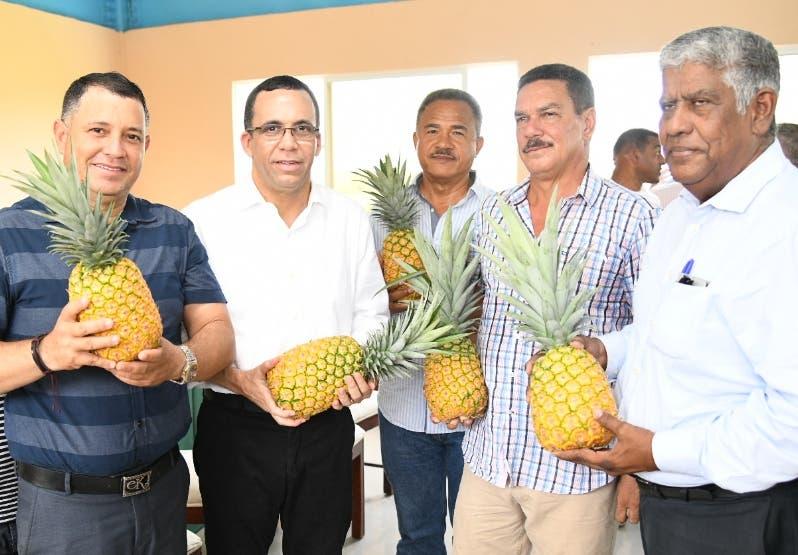 Andrés Navarro con productores de piña de Cevicos.