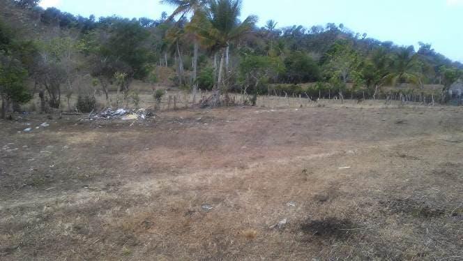 sequia-esta-acabando-con-la-vida-de-animales-y-humanos-en-palo-indio-y-otras-localidades-parte-oeste-de-puerto-plata-1