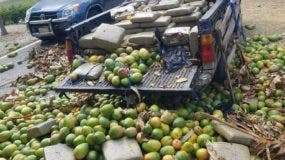 La droga estaba escondida debajo de unos mangos en la camioneta.