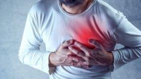 Las enfermedades del corazón son muy comunes en los humanos pero poco frecuentes en los animales.