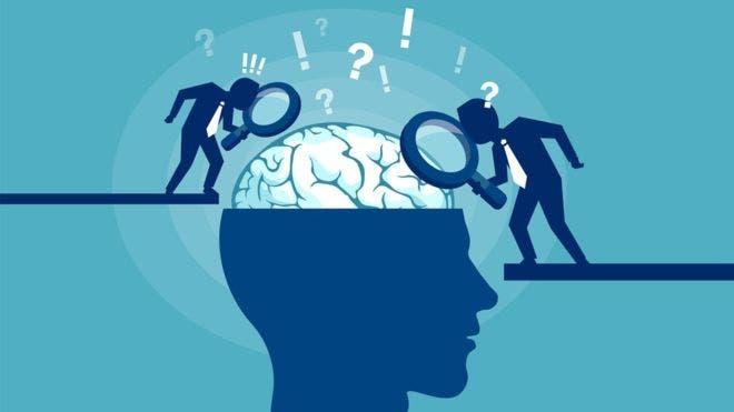 La inteligencia emocional es la capacidad de percibir, expresar, comprender y gestionar las emociones.
