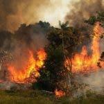 Investigaciones dejan en claro que los incendios no están vinculados a la temporada seca.