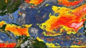 La imagen de satélite muestra en rojo y amarillo la influencia del polvo del Sahara en el calentamiento de la atmósfera en el Atlántico.