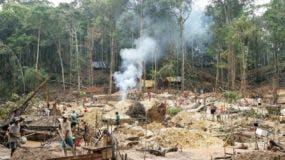 La tasa de deforestación en la selva brasileña creció un 66 % en julio pasado.