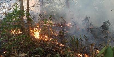 """Fotografía del 18 de agosto de 2019, cedida por el cuerpo de Bomberos de la ciudad de Porto Velho, que muestra una de las conflagraciones de los grandes incendios que azotan la amazonía brasileña, en Porto Velho, capital del estado amazónico de Rondonia (Brasil). Las llamas continúan devorando la selva amazónica en medio de una creciente indignación popular, una tragedia que las organizaciones ecologistas achacan a la """"retórica antiambiental"""" del presidente de Brasil, Jair Bolsonaro. La región amazónica ha registrado más de la mitad de los 71.497 focos de incendio detectados en Brasil entre enero y agosto de este año, una cifra un 83 % superior al del mismo período de 2018, según los datos divulgados por el estatal Instituto Nacional de Pesquisas Espaciales (INPE). Los incendios en la selva brasileña han centrado en los últimos días la atención del mundo en Brasil, un país cuyo presidente ha cargado en reiteradas ocasiones contra lo que califica de """"activismo ambiental chiíta"""" y ha cuestionado públicamente los datos oficiales sobre deforestación. EFE/ Bomberos De Porto Velho SOLO USO EDITORIAL/NO VENTAS/NO ARCHIVO"""