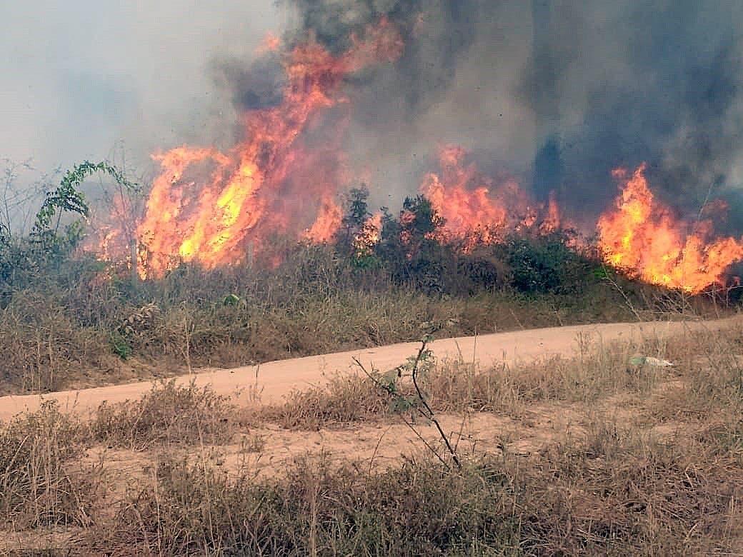 """Fotografía del 21 de agosto de 2019, cedida por la Brigada Municipal que muestra uno de los incendios que azotan la amazonía brasileña, en Porto Velho, capital del estado amazónico de Rondonia (Brasil). Las llamas continúan devorando la selva amazónica en medio de una creciente indignación popular, una tragedia que las organizaciones ecologistas achacan a la """"retórica antiambiental"""" del presidente de Brasil, Jair Bolsonaro. La región amazónica ha registrado más de la mitad de los 71.497 focos de incendio detectados en Brasil entre enero y agosto de este año, una cifra un 83 % superior al del mismo período de 2018, según los datos divulgados por el estatal Instituto Nacional de Pesquisas Espaciales (INPE). Los incendios en la selva brasileña han centrado en los últimos días la atención del mundo en Brasil, un país cuyo presidente ha cargado en reiteradas ocasiones contra lo que califica de """"activismo ambiental chiíta"""" y ha cuestionado públicamente los datos oficiales sobre deforestación. EFE/"""