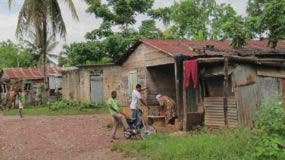 La pobreza rural bajó de 24% en 2014 a 9.5% en   2019, según indicador de la FAO.