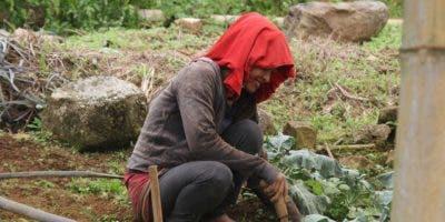 1-dia-internacional-de-las-mujeres-rurales