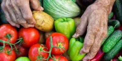 Los campesinos producen 80% de la comida en el mundo en desarrollo. A pesar de ello, son los más propensos a sufrir hambre.