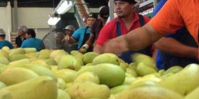 Empaque será lanzado en el Produce Marketing Association