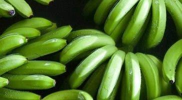 Los plátanos verdes subieron en 4.8%.