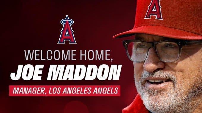 Joe Maddon retorna a los Angelinos como su nuevo manager