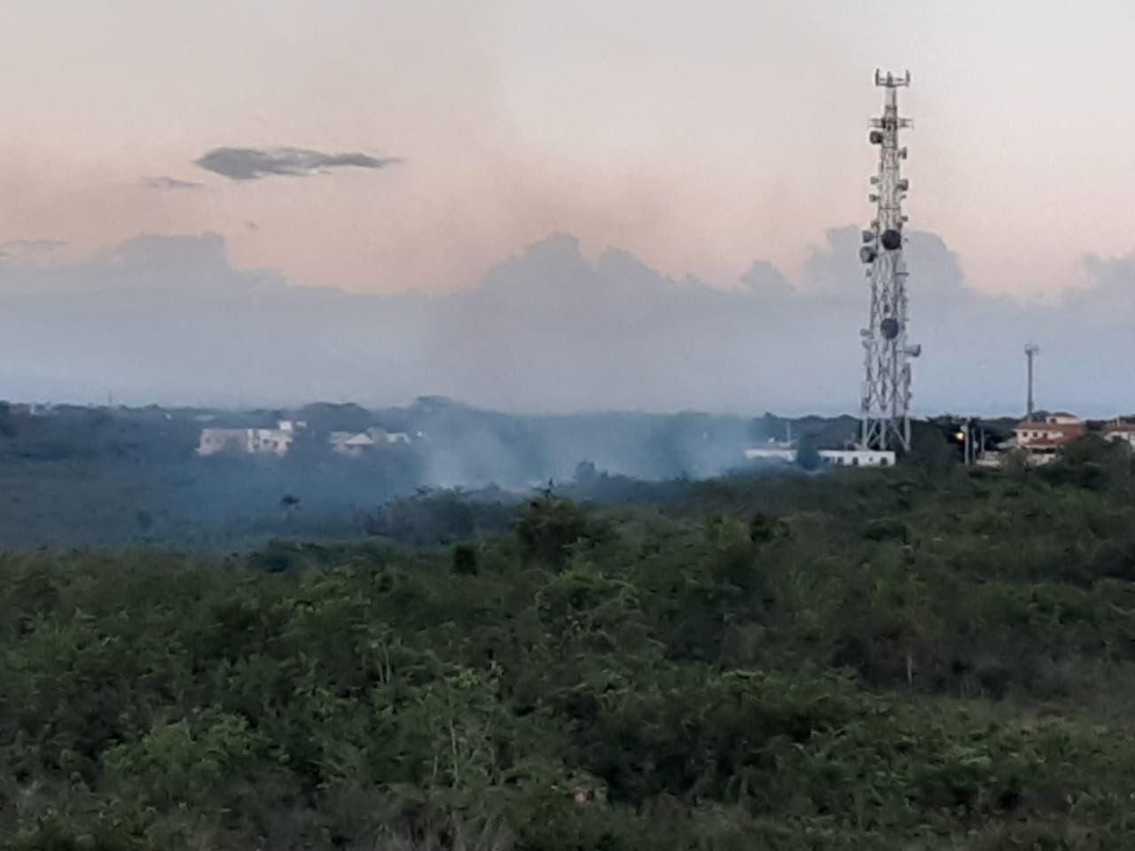 Humareda por quema indiscriminada de árboles afecta residentes en sectores autopista San Isidro