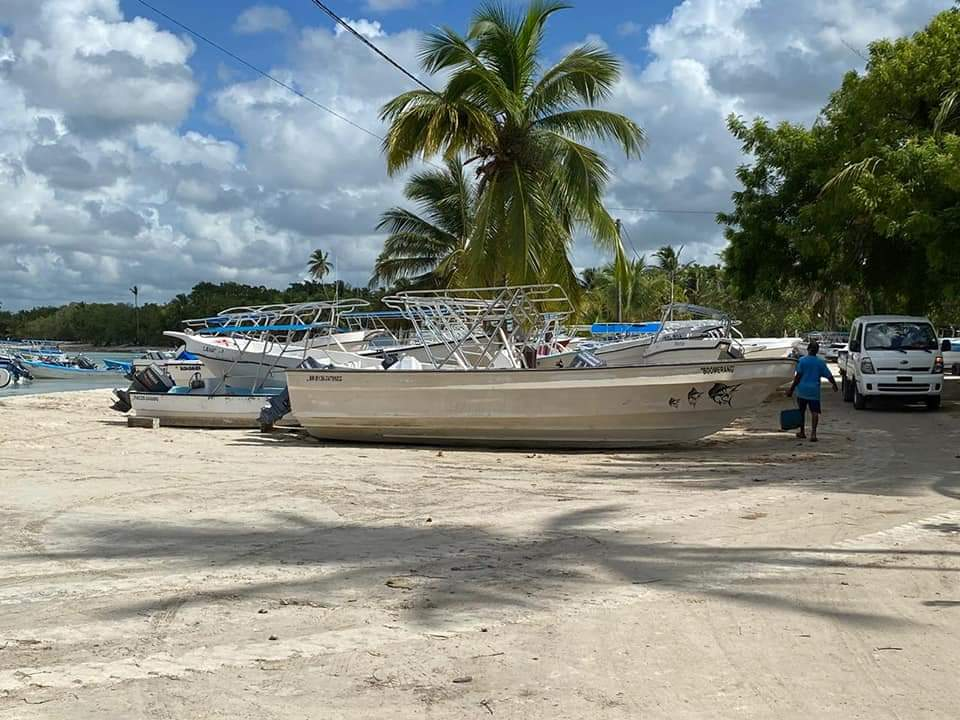 Asociación de Empresas de Excursiones de Bayahíbe pide auxilio al nuevo gobierno