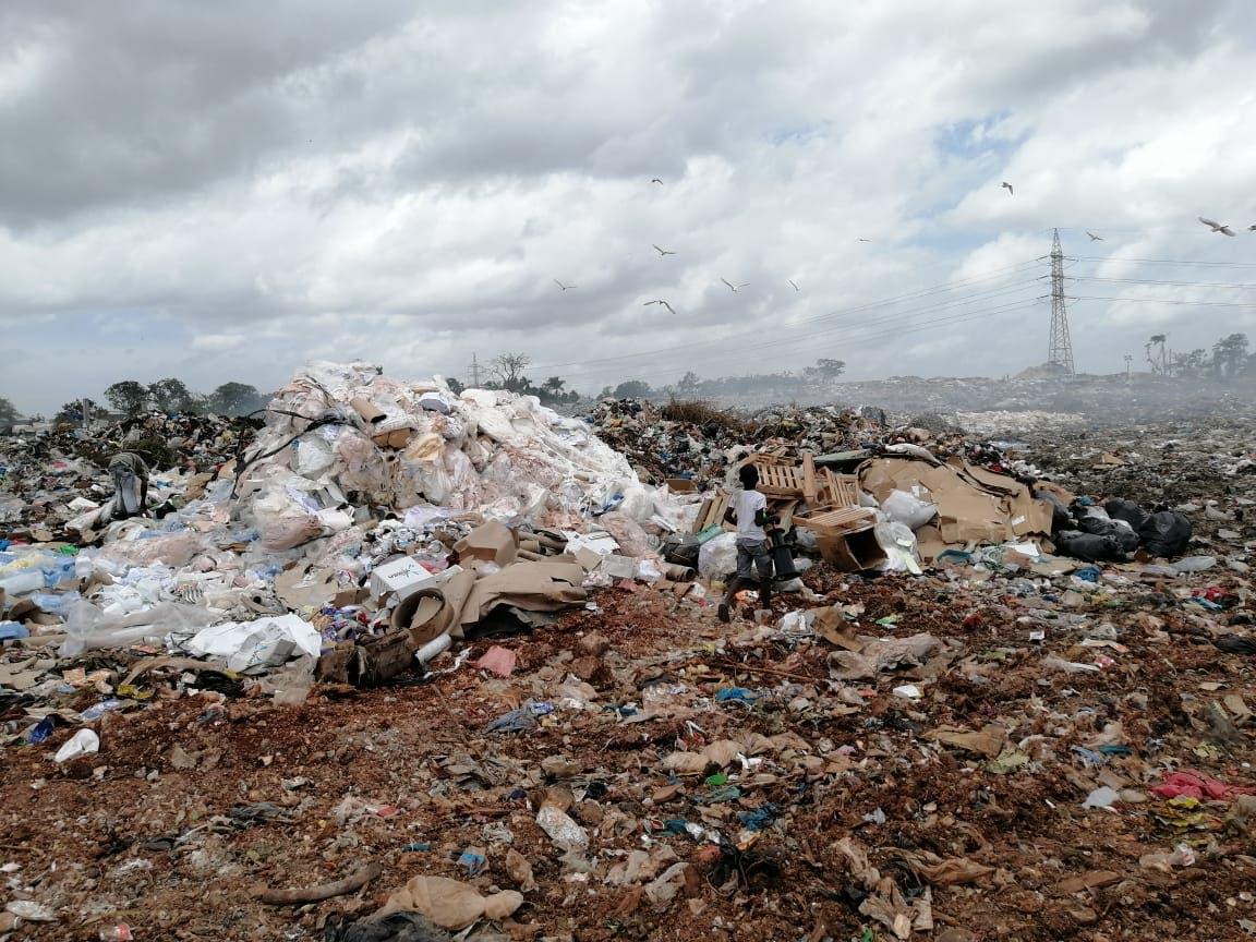 Emplazan a LMD y Fedomu a intervenir en sentencia sobre contaminación con plomo