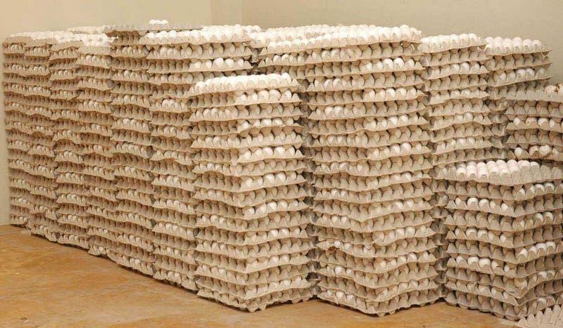 Agricultura intervendrá para evitar el huevo suba de precio