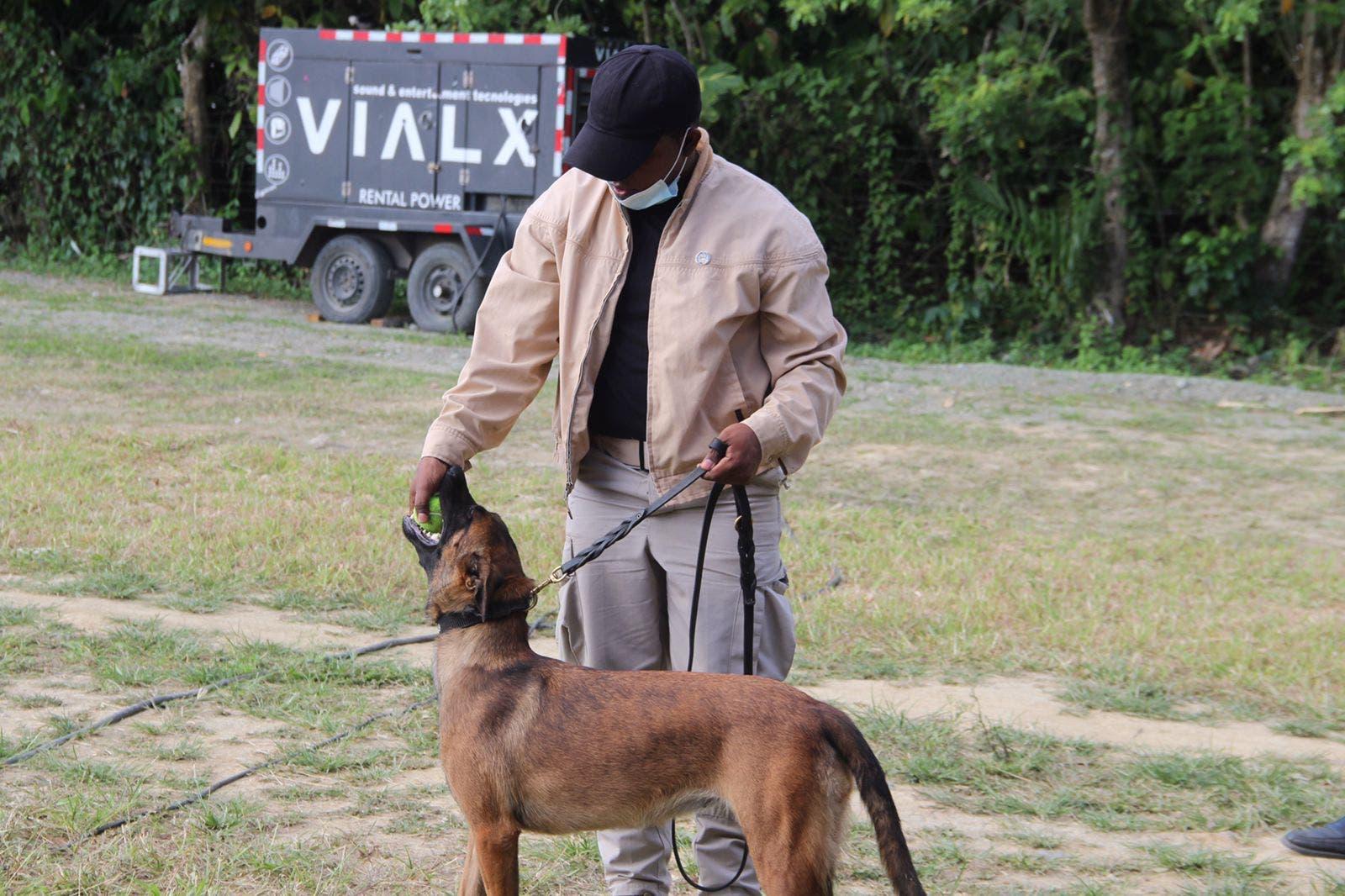 Seguridad presidencial incorpora perros detectores de explosivos