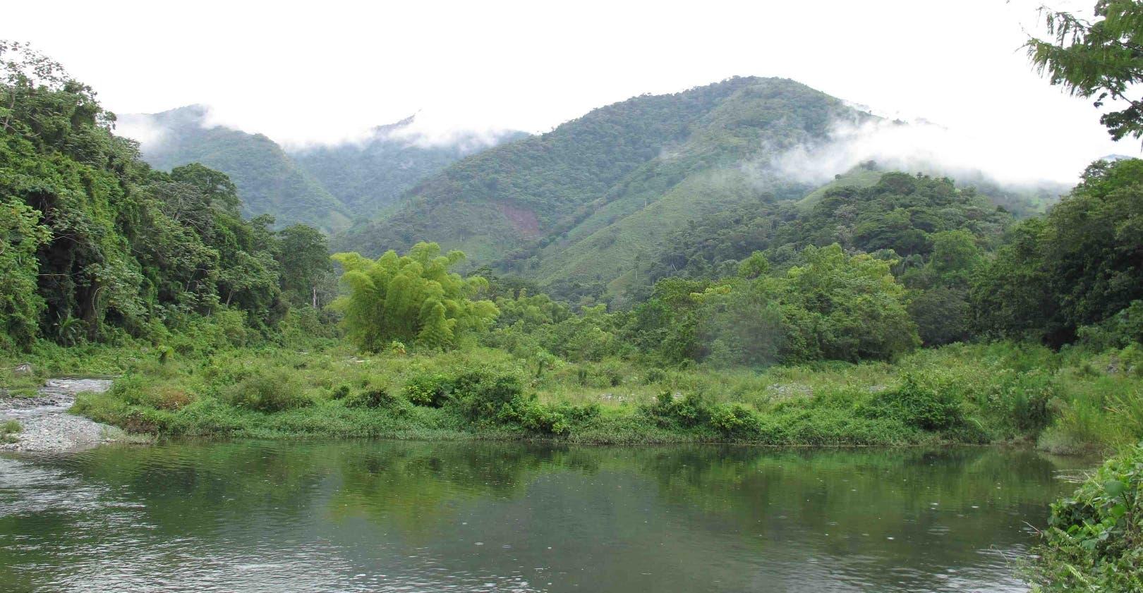 Las investigaciones ambientales, soporte al desarrollo sostenible