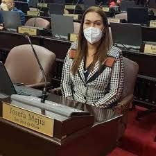 Otra diputada abandona las filas PLD por disgustos
