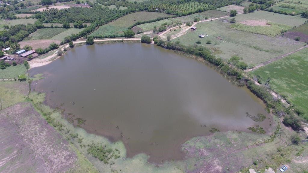 RD producirá tilapias en embalse de la presa fronteriza La Piña, en Dajabón