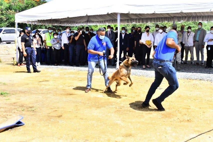 Aerodom dona seis caninos al Cesac
