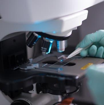 PUCMM lidera investigación científica en  el país
