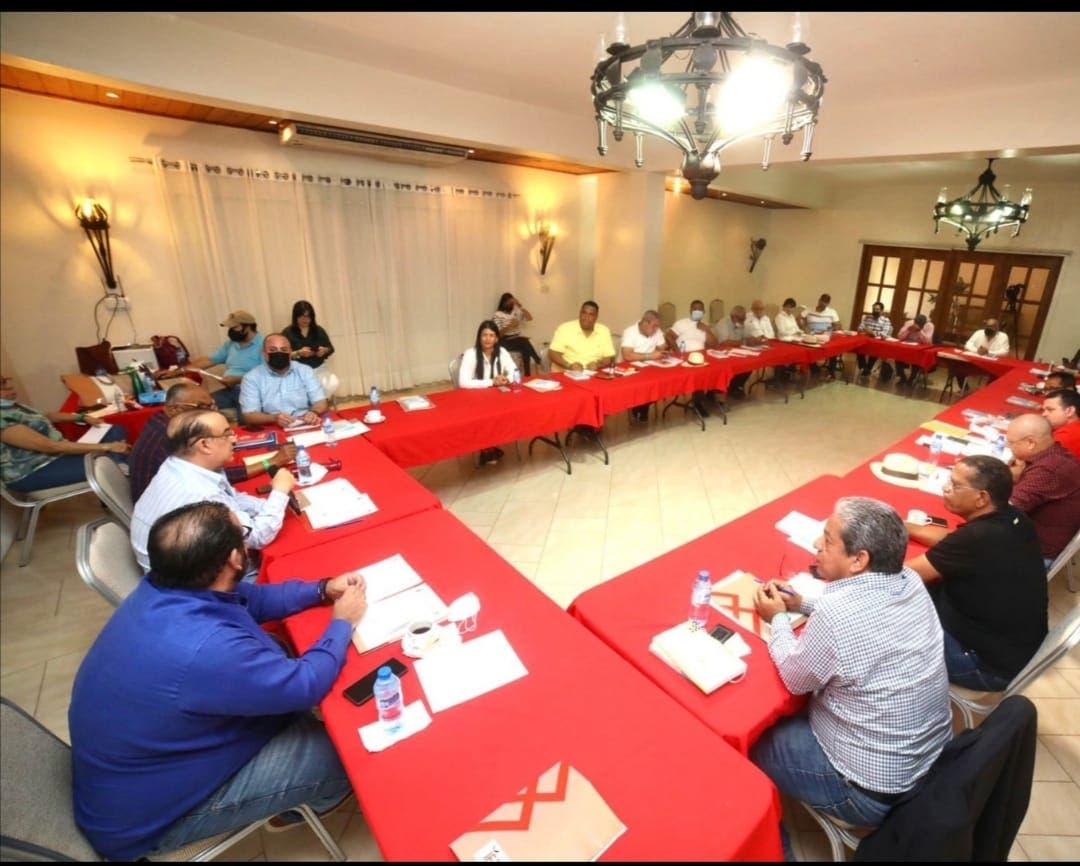 PRSC analiza propuesta para la reforma constitucional