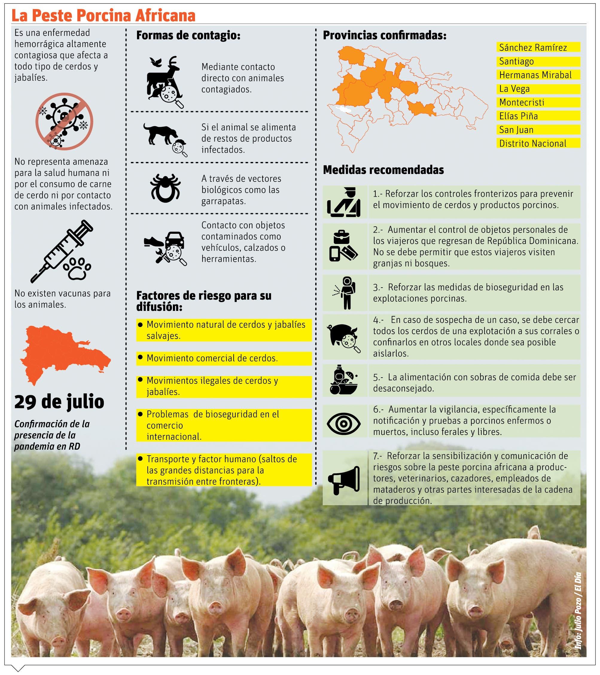 La FAO alerta a países por peste porcina en RD